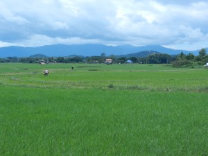 The cozy Lan Na landscape, near Nan, Thailand.