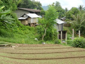 A village in the mountains of Laos.